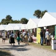 Attendees-roaming-fair
